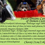 Sweet Dreams Carino of Demon Castle